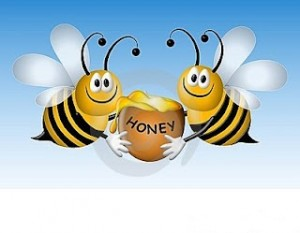 bees to honey